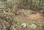 Гольшаны, кладбище еврейское