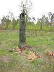 Телеханы, кладбище христианское: могила Болеслава Почёпки